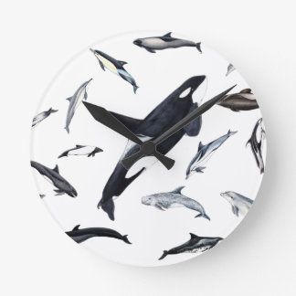 Circle of dolphins round clock