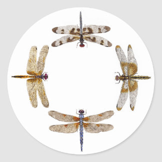 Circle of Dragonflies Stickers