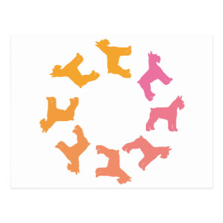 Circle of Giant Schnauzers pinks to oranges Postcard