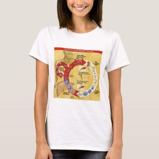 Circle of Life T T-Shirt