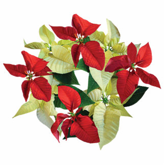 Circle of Red and Yellow Poinsettias Photo Sculptures