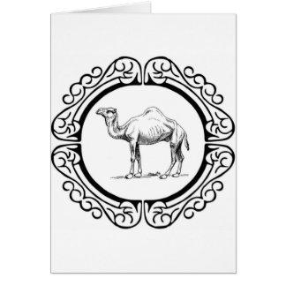 circle of the camel card