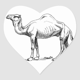 circle of the camel heart sticker