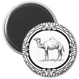 circle of the camel magnet