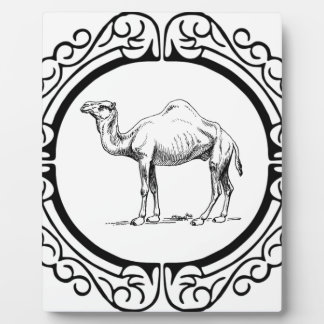 circle of the camel plaque
