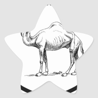 circle of the camel star sticker