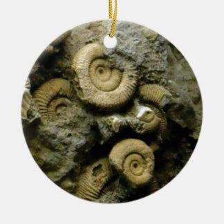circles of fossil snails ceramic ornament