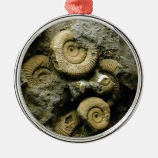 circles of fossil snails metal ornament