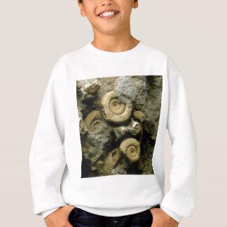 circles of fossil snails sweatshirt