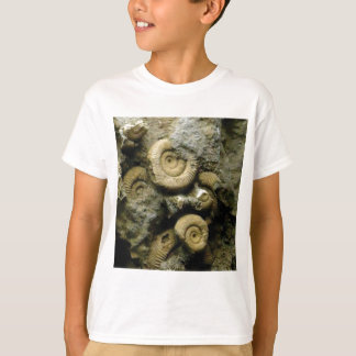 circles of fossil snails T-Shirt