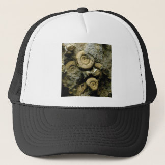 circles of fossil snails trucker hat