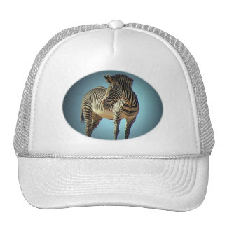 Circular Zebra Baseball Hat