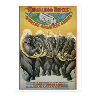 Circus Elephants Brass Band Postcard