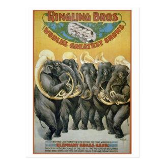 Circus Elephants Brass Band Postcards