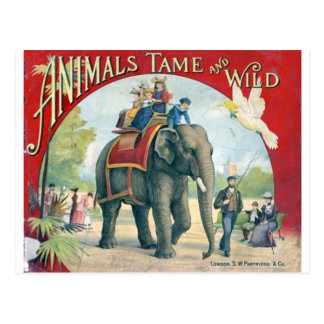 Circus Vintage Design Post Card
