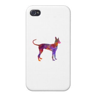 Cirneco Dell Etna in watercolor Cover For iPhone 4