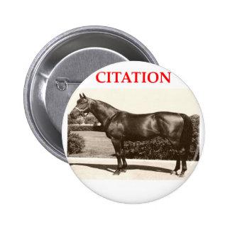citation pinback button