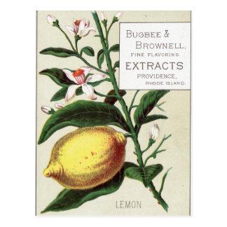 Citron vintage carte postale