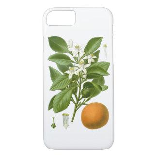 Citrus Fruit Orange Botanical no. 2 Home Decor iPhone 8/7 Case