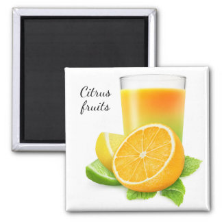 Citrus fruits juice square magnet