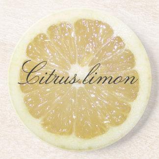 Citrus Limon Lemon Slice Coaster