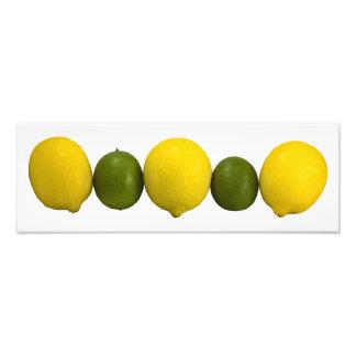 Citrus Row Photo