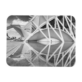 City of Arts and Sciences Rectangular Photo Magnet