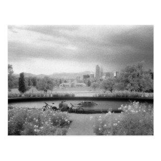 City Park, Denver, Colorado Postcard