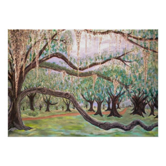 City Park Oak Trees Poster