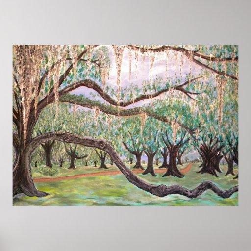 City Park Oak Trees Print