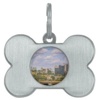 Cityscape of Recife, Pernambuco Brazil Pet Tag