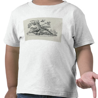 Civet with Cockerel from 'History of Quadrupeds' Tees