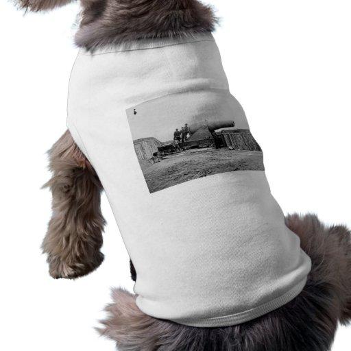 Civil War, Alexandria, Virginia, 1860-1865 Dog T Shirt