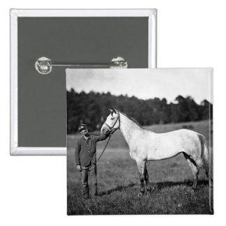 Civil War Horse 1860s Pinback Buttons