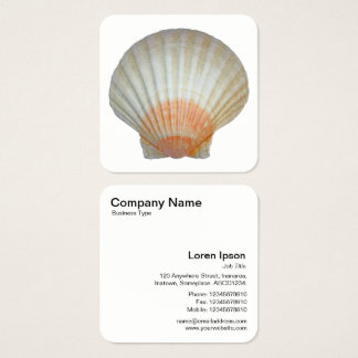 Clam Shell Square Business Card