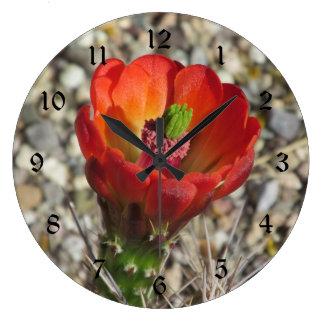 Claret Cup Hedgehog Cactus Bloom Wall Clocks