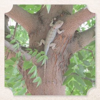 Clark's Spiny Lizard in a Tree Paper Coaster