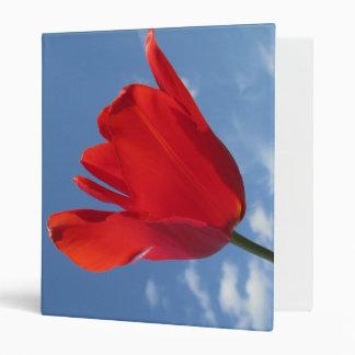 Classeur - ciel bleu de tulipes rouges