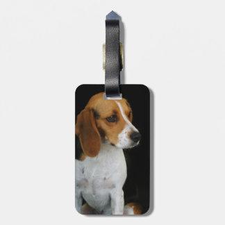 Classic Beagle Luggage Tag