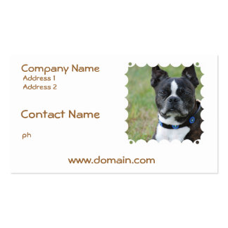 Classic Boston Terrier Dog Business Card