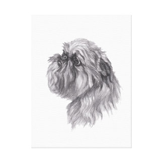 Classic Brussels Griffon Dog profile Drawing Canvas Print