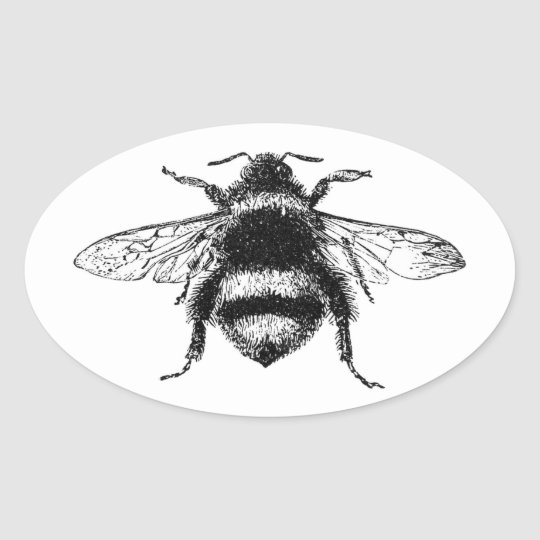Classic Bumble Bee Oval Sticker