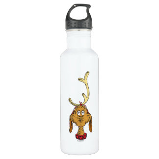 Classic Grinch | Max 710 Ml Water Bottle