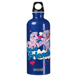 Classic My Little Ponies | Best Friends Water Bottle
