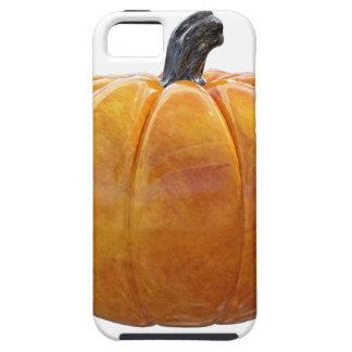 Classic Orange Pumpkin iPhone 5 Case
