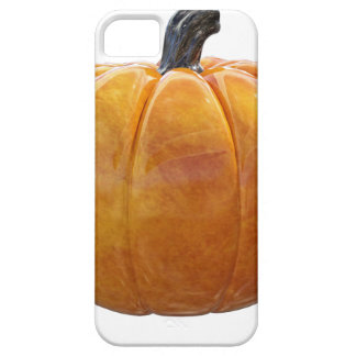 Classic Orange Pumpkin iPhone 5 Cases