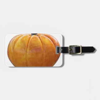Classic Orange Pumpkin Luggage Tag