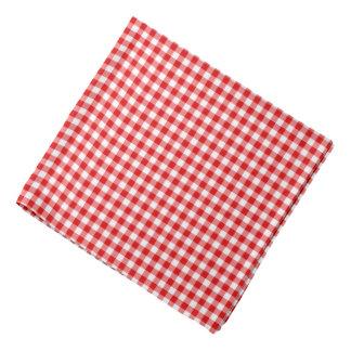 Classic Red Gingham Check Pattern Dog Bandana