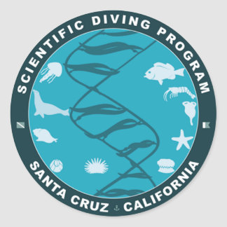 Classic Remix Diving Sticker