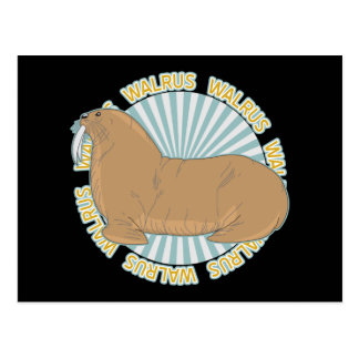 Classic Walrus Postcard